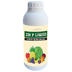 zn-p-liquid-4133.png